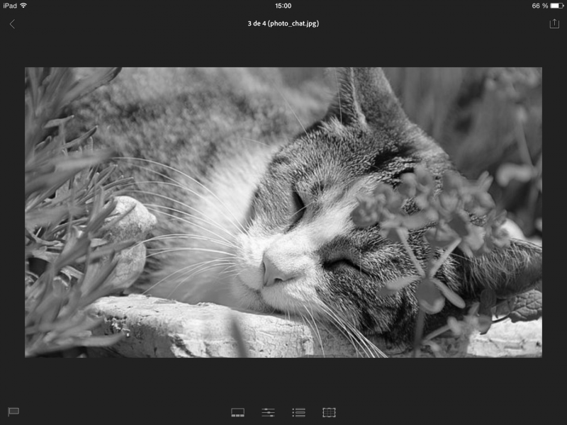 Test adobe lightroom pour ipad for Test ecran pc pour retouche photo